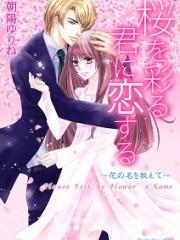 「桜を彩る君に恋する」表紙_小